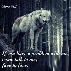 Proverbs Open rebuke is better than secret love. Faithful are the wounds of a friend, but the kisses of an enemy are deceitful. Wolf Qoutes, Lone Wolf Quotes, Strong Quotes, True Quotes, Positive Quotes, Wolf Photos, Wolf Pictures, Inspiring Quotes About Life, Inspirational Quotes