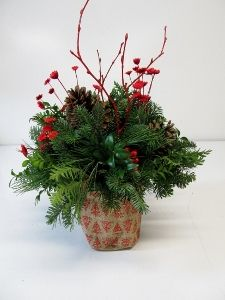 New Christmas Items for 2014 Christmas Items, Christmas Wreaths, Christmas Floral Arrangements, Greenery, Holiday Decor, Plants, Winter, Winter Time, Plant