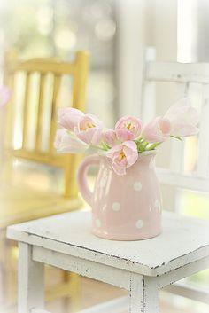 pink polka dot beauty