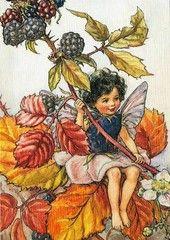 €1 Karhunvatukkakeiju (Flower Fairies) Mary Barker