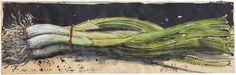 """""""Lange Zwiebelei"""" 10,5 x 33 cm Federzeichnung, Aquarell, Farbstift 2016"""