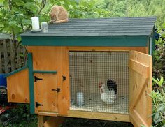 30 custom chicken coop design ideas for building your own chicken coop in your backyard.