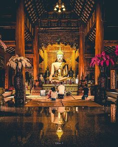 15 Best Buddhist monk images | Buddhist monk, Steve mccurry
