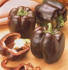 Chocolate Dipped Bell Peppers... definitely thinking outside the box!!! It's worth trying!!