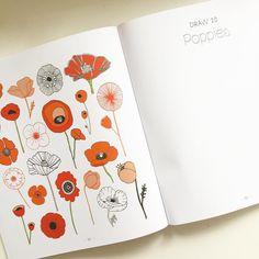 Poppies from my book 20 Ways to Draw a Tulip & 44 Other Fabulous Flowers // signed copies for sale in my shop along with other goodies // lisacongdon.etsy.com