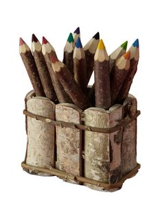 White Birch Desktop Holder With 12 Twig Crayons by Inntrax on Gilt.com