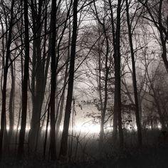Lumen by Jürgen Heckel, via Behance