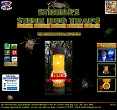 Strube's Stink Bug Traps: The Traps That Work!   They Do!!!  THANK Heavens!!!