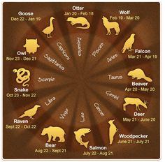 Native American Astrology