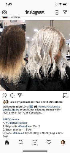 Hair Levels, Ice Blonde Hair, Color Correction Hair, Hair Color Formulas, Hair Toner, Rides Front, Winter Hairstyles, New Hair Colors, Beach Hair