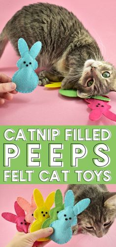 These Bunny Peeps Catnip Toys are the sweetest DIY you can make for your pet this spring and using acrylic craft felt, they're cheap, too! Animal Projects, Animal Crafts, Diy Catnip Toys, Crochet Cat Toys, Homemade Cat Toys, Dog Furniture, Cat Room, Felt Cat, Felt Toys