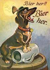 teckel bier - Google Search