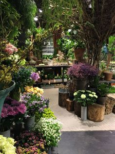 Schnittblumen verkaufen im Hofladen - Per Schild anbieten und dann mit dem Kunden zur Pflanze und frisch schneiden