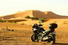 The Sahara desert Painters, Motorcycle, World, Vehicles, Motorcycles, Car, The World, Motorbikes, Choppers