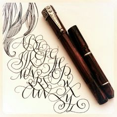 Two safety pens, both by Waterman. | Leigh Reyes. My Life As a Verb.