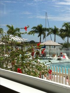 Condo vacation rental in Indian Shores from VRBO.com! #vacation #rental #travel #vrbo