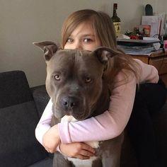 Happy weekend!! Hugs and love! #bestfriends #girlandherdog #mygirl #myboy #myfamily #pitbull #pitbulls #pitbullsofinstagram #pit #pits #pitsofinstagram #pitbulllife #pitbulladvocate #pitbulllove #whogivesapit #bully #bullylove #bluenose #bluepit #dogs #dog #dogsofinstagram #americanpitbullterrier #fuckadba } Photo : http://ift.tt/1R3Efeb