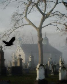 As the Crow flies over the headstones so do their spirits fly restlessly in the wee hours of the night.