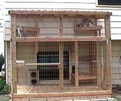 cat houses for outside   in the house we moved into in March 2000, Saint Charles, IL.
