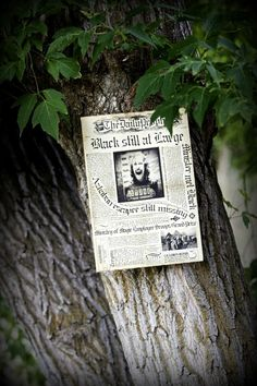 Harry Potter Party- wanted posters for Sirius Black pinned up outside