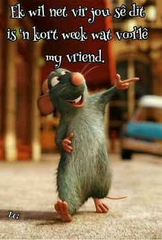 Witty Quotes Humor, Movie Quotes, Funny Quotes, Life Quotes, Qoutes, Motivational Words, Inspirational Quotes, Good Morning Vietnam, Cute Animal Quotes