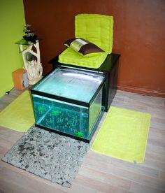 Fish Pedicure, Aquarium, Sports Cars Lamborghini, Spa, Garra, Pedicures, France, Home Decor, Architecture