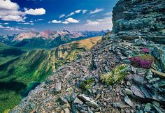 Akamina-Kishinena Provincial Recreation Area, British Columbia, Canada
