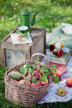 An Autumn Picnic. Apple Farm, Apple Orchard, Picnic Time, Summer Picnic, Picnic Parties, Picnic Spot, Apple Tree, Red Apple, Garden Picnic