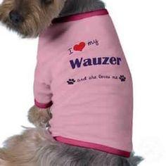 wauzer - Bing Images