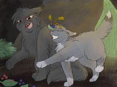 Warrior Cats Do Cats Curse