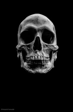 https://flic.kr/p/fSCpKM | Human Skull