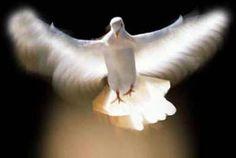Powerful Raise Vibration Spirit/Soul Connection - Brainwave Binaural - D. Spirit Soul, Holy Spirit, Jean 3 16, Halloween Imagem, Amy Grant, Christian Music Videos, Saint Esprit, Grief Loss, Les Religions