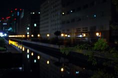 Tokyo, leaves and river in the night.