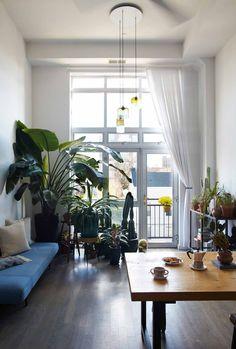 An Airy Modern Greenhouse in Brooklyn / Design*Sponge
