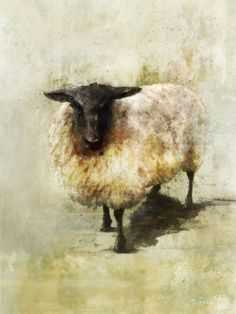 Black Sheep 01 by Toronto artist Ken Roko.