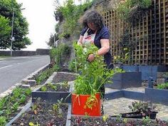 Incredible Edible: How To Make Your Town Self-sufficient