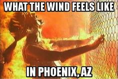 Image result for phoenix hot weather