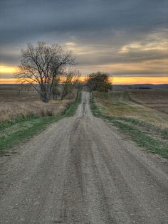 dirt road reminds me of Hico, Texas...