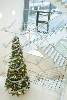 Large Indoor & Outdoor Christmas Tree Hire and Rental Christmas Themes, Christmas Wreaths, Christmas Decorations, Holiday Decor, Urban Planters, Artificial Garland, Garlands, Workplace, Charity