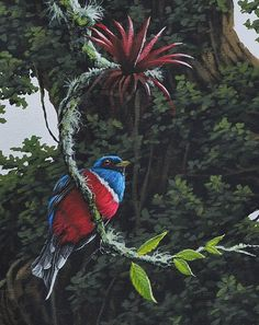 Resultado de imagen para paisaje cultural cafetero painting