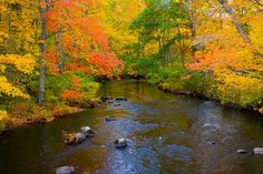 River and autumn foliage, Vermont
