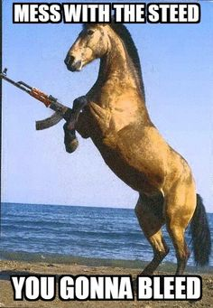 Mess with the steed, you gonna bleed