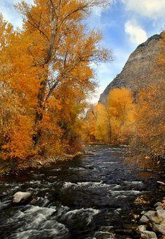 Provo River Utah Photograph