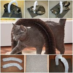 juguetes caseros para gatos 6