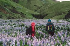 """topo-designs: """" Flap Pack friends out in Iceland with the Candy Mountain Collective. Photo by Skyler Greene """""""