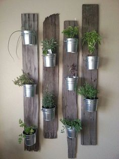 Plantes aromatiques en intrieur Plus