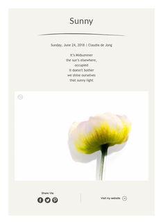 Sunny Framed Words, Sunny Sunday, Simple Photo, Sunnies, Photo Art, Prints, Inspiration, Biblical Inspiration, Sunglasses