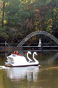 Rainbow lake is a beautiful wedding venue in Brevard NC, about 45 minutes from Asheville. The swan boat floats on the lake and many brides and grooms arrive at their outdoor wedding via the swan boat.