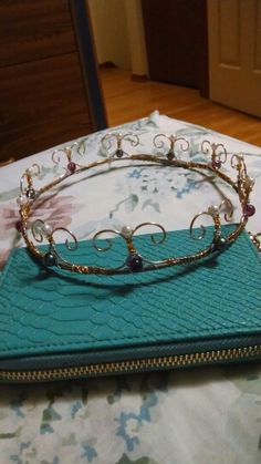 DIY wire crown. Saw a picture and improvised. :)