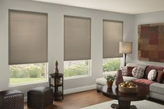Cellular Shades Custom Made Shades Blinds To Go with proportions 1650 X 1100 Cellular Honeycomb Blinds - Whether working at a classical style office or a Modern Window Treatments, Window Treatments Living Room, Living Room Windows, Living Rooms, Window Shutter Blinds, Blinds For Windows, Window Shutters, Honeycomb Blinds, Honeycomb Shades